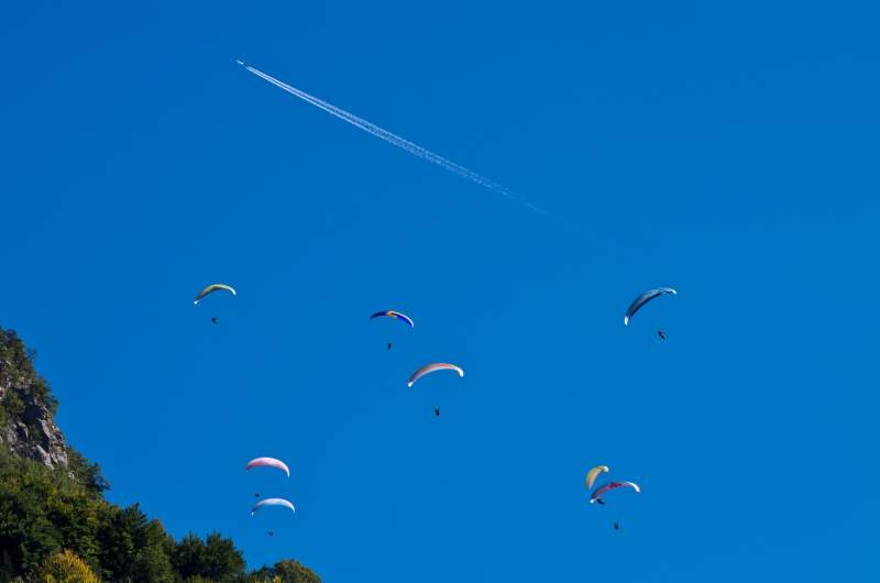 Dancing Paragliders